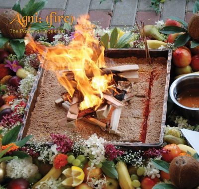 Angi (Fire) – The Power Of Digestion