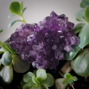 Amour Amethyst Cluster